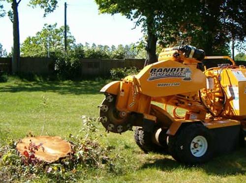 stump-removal